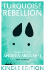 Turquoise Rebellion (amazon cover)